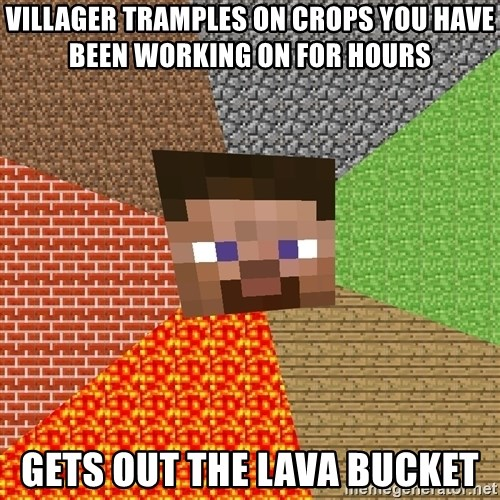 Minecraft Guy - villager tramples on crops you have been working on for hours gets out the lava bucket