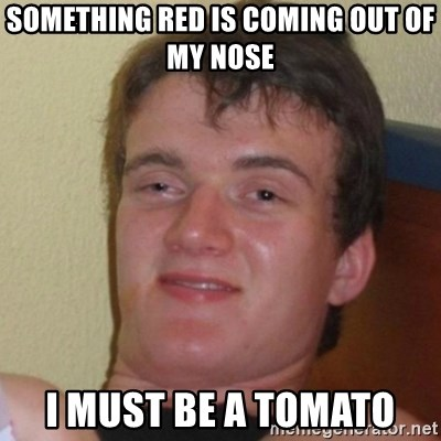 Really Stoned Guy - sOMETHING RED Is COMING OUT OF MY NOsE I MUsT BE A TOMATO