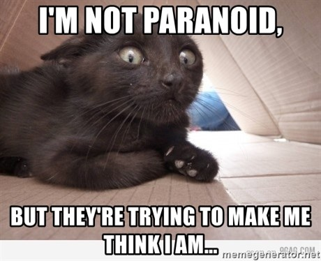 Paranoid cat - I'm not paranoid, but they're trying to make me think i am...
