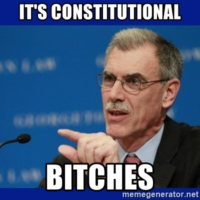 Donald Verrelli - It's constitutional Bitches