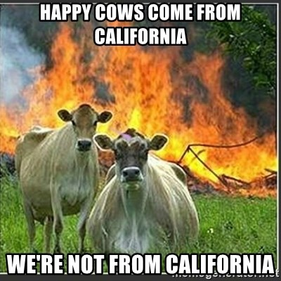 Evil Cows - Happy cows come from california we're not from california