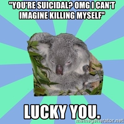 "Clinically Depressed Koala - ""You're suicidal? omg i can't imagine killing myself"" lucky you."