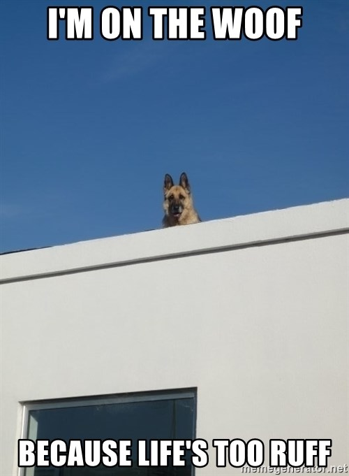 Roof Dog - I'M ON THE WOOF BECAUSE LIFE'S TOO RUFF