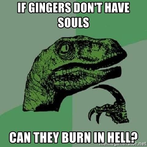 Philosoraptor - if gingers don't have souls can they burn in hell?
