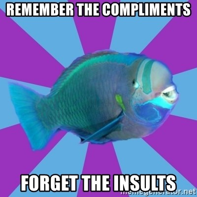 transparrotfish - Remember the compliments forget the insults