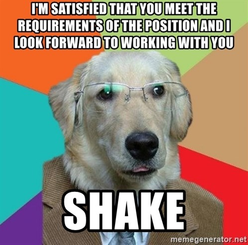 Business Dog - I'm satisfied that you meet the requirements of the position and I look forward to working with you shake