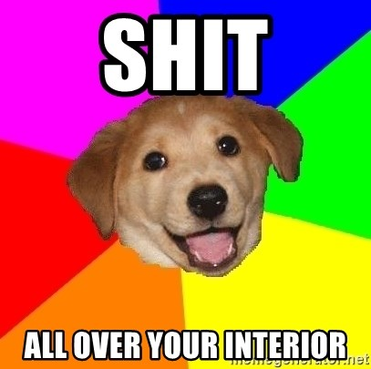Advice Dog - SHIT ALL OVER YOUR INTERIOR