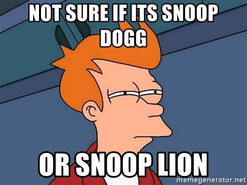 Futurama Fry - not sure if its snoop dogg or snoop lion