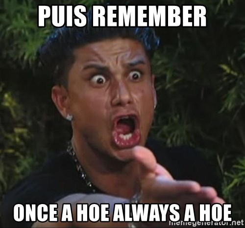 Pauly D - Puis Remember Once a hoe always a hoe