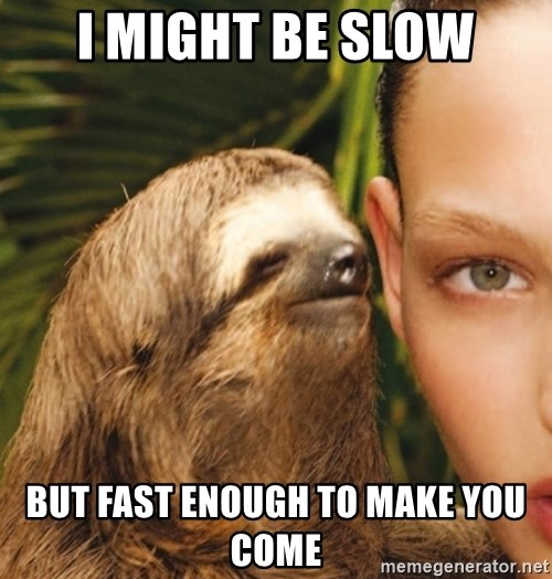 The Rape Sloth - i might be slow but fast enough to make you come