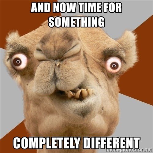 Crazy Camel lol - and now time for something completely different