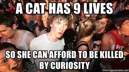 Sudden Realization Ralph - A Cat has 9 lives so she can afford to be killed by curiosity