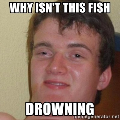 really high guy - why isn't this fish  drowning