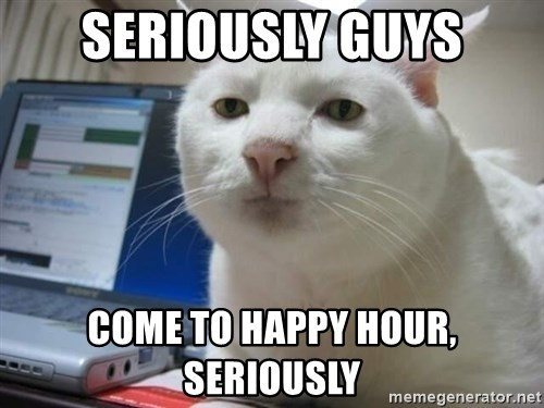 Funny Memes For Happy Hour : Seriously guys come to happy hour serious cat