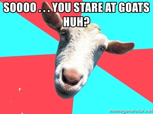Oblivious Activist Goat - SOOOO . . . YOU STARE AT GOATS HUH?