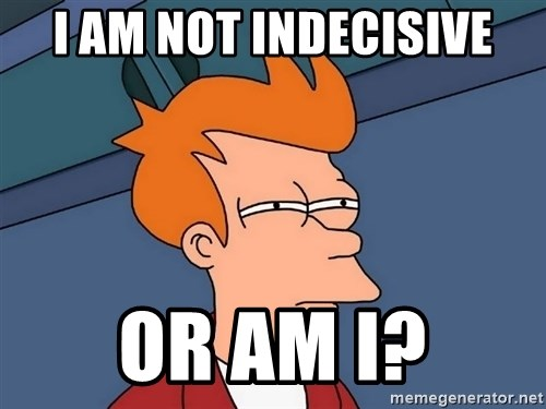 Futurama Fry - I AM NOT INDECISIVE OR AM I?