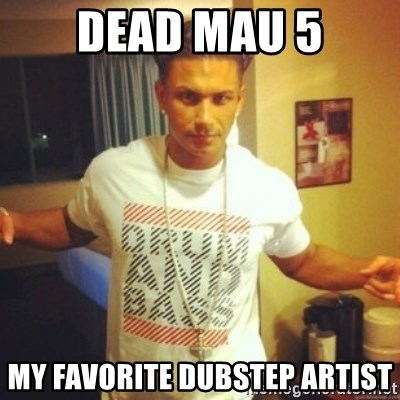 Drum And Bass Guy - Dead mau 5 my favorite dubstep artist