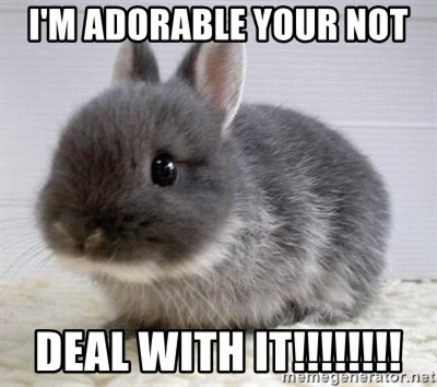 ADHD Bunny - I'M ADORABLE YOUR NOT DEAL WITH IT!!!!!!!!