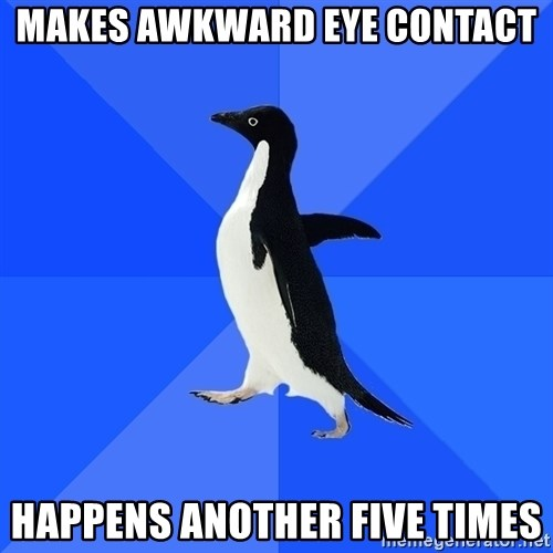 Socially Awkward Penguin - MAKES AWKWARD EYE CONTACT HAPPENS ANOTHER FIVE TIMES