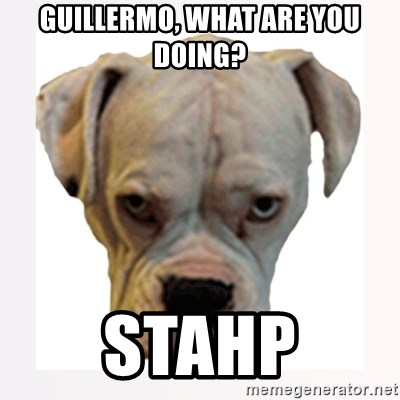 stahp guise - Guillermo, What are you doing? STAHP
