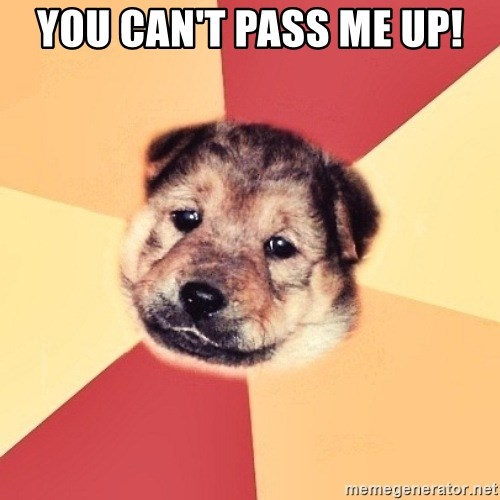 Typical Puppy - YOU CAN'T PASS ME UP!