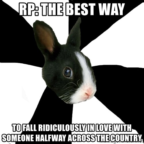 Roleplaying Rabbit - RP: the best way to fall Ridiculously in love with someone halfway across the country
