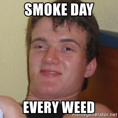 Really highguy - smoke day every weed