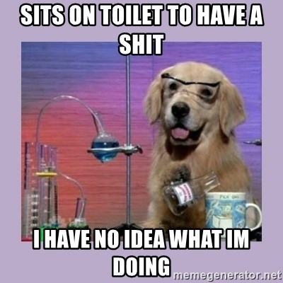 Dog Scientist - sits on toilet to have a shit i have no idea what im doing