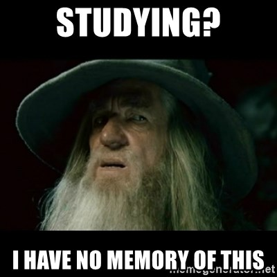 no memory gandalf - STUDYING? I HAVE NO MEMORY OF THIS