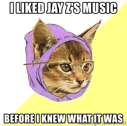 Hipster Kitty - I liked jay z's music before i knew what it was
