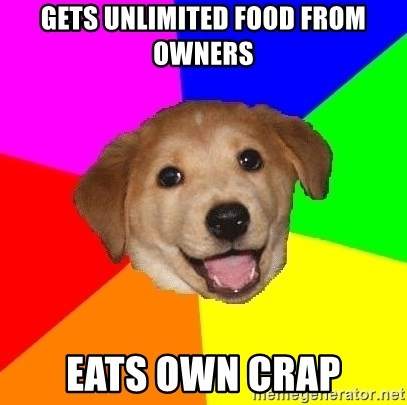 Advice Dog - Gets unlimited food from owners eats own crap
