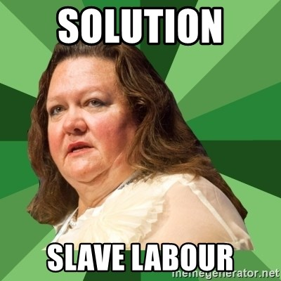 Dumb Whore Gina Rinehart - solution  slave labour