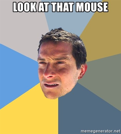 Bear Grylls - look at that mouse