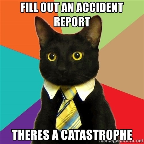 Business Cat - fill out an accident report theres a catastrophe
