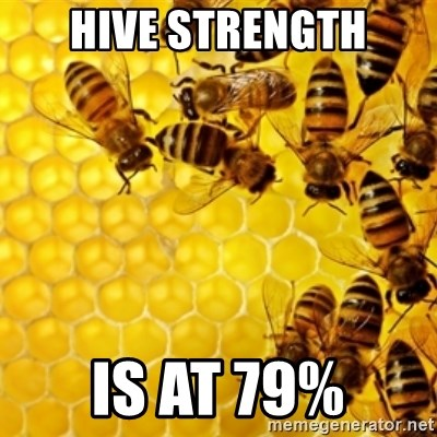 Honeybees - hive strength is at 79%