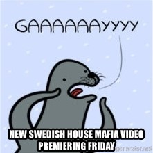 GAAAY - New sWedish house mafia video premiering friday