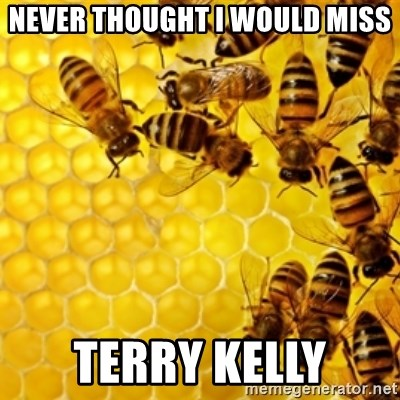 Honeybees - Never thought I would miss terry kelly