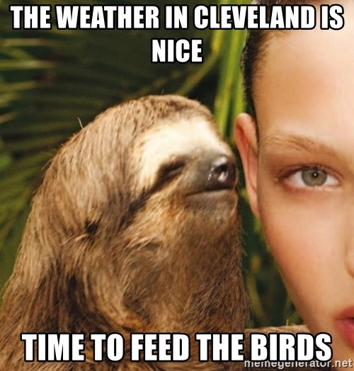 The Rape Sloth - the weather in cleveland is nice time to feed the birds