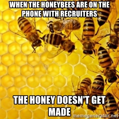 Honeybees - when the honeybees are on the phone with recruiters the honey doesn't get made