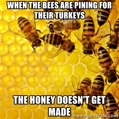Honeybees - when the bees are pining for their turkeys the honey doesn't get made