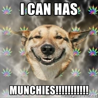 Stoner Dog - i can has munchies!!!!!!!!!!!