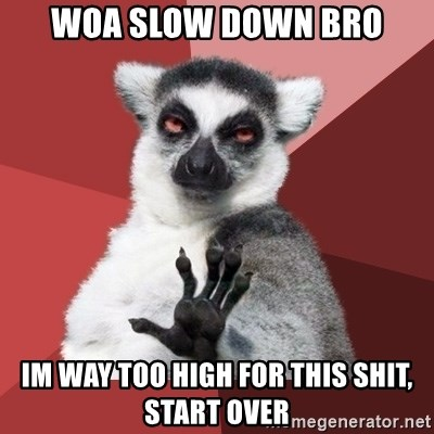 Chill Out Lemur - woa slow down bro im way too high for this shit, start over