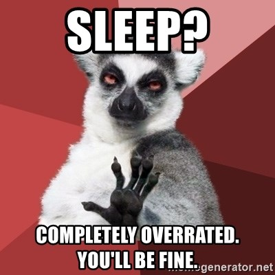 Chill Out Lemur - Sleep? completely overrated.    you'll be fine.