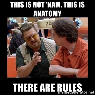 walter sobchak - tHIS IS NOT 'NAM. this is Anatomy There are rules