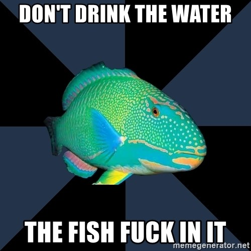 Trans Parrot Fish's Significant Other - don't drink the water the fish fuck in it