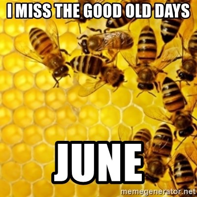 Honeybees - i miss the good old days june