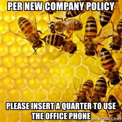 Honeybees - per new company policy please insert a quarter to use the office phone