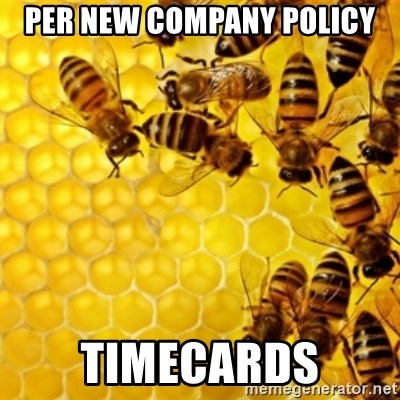 Honeybees - per new company policy timecards