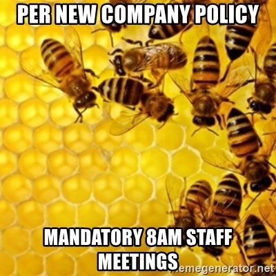 Honeybees - per new company policy mandatory 8am staff meetings