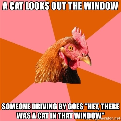 "Anti Joke Chicken - a cat looks out the window someone driving by goes ""hey, there was a cat in that window"""